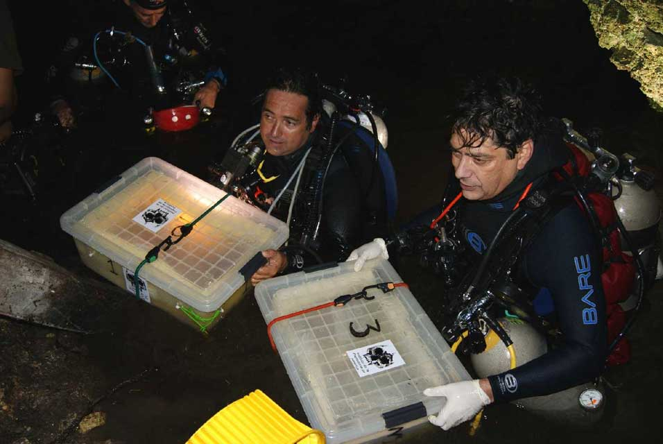 Mexican Archaeologists Extract 10,000 Year-Old Skeleton from Flooded Cave in Quintana Roo